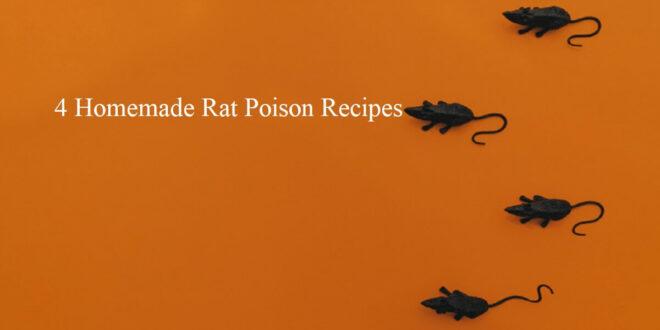 homemade rat poison